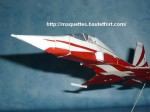 Patrouille suisse nez-photo01.JPG