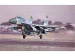 SU-27 VPVO-image03.jpg