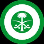 Saudi hawks-insigne2.jpg