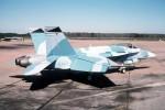 Hornet-image10.jpg