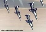 Saudi hawks-image02.jpg