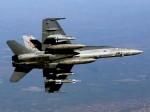 Hornet-image03.jpg