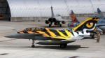 Rafale C tiger-image02.jpg