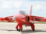 gnat-red arrows-image2.jpg