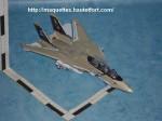 F-14-photo01.JPG