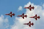 F-5 suisse-image04.jpg