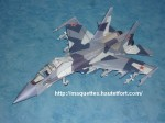 SU30 nez-photo01.JPG