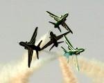 Saudi hawks-image03.jpg