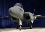 F15SE-image02.jpg