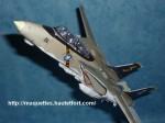F-14-photo12.JPG