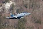 F-18 suisse-image06.jpg