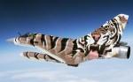 tiger meet (28).jpg