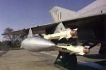 AA-8 aphid-image03.jpg