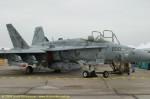 Hornet-image12.jpg