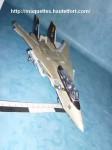 F-14-photo04.JPG