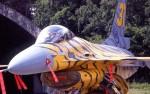 F-16-tigre-image2.jpg