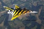 Rafale C tiger-image03.jpg