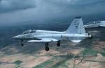 F-5-image12.jpg