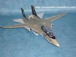 F-14-photo07.JPG