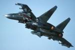 SU-30-image04.jpg