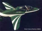 Saudi hawks-image01.jpg